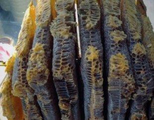 عسل طبیعی گرده گل ژله رویال