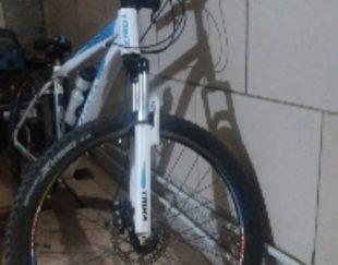 دوچرخه ترینکس
