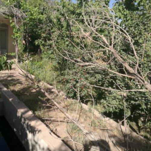 باغ ویلایی ۷۰۰متر قلعه سفید