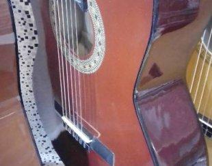 گیتار فروشی فرد
