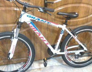 دوچرخه جاینت آلومینیوم نو آکبند
