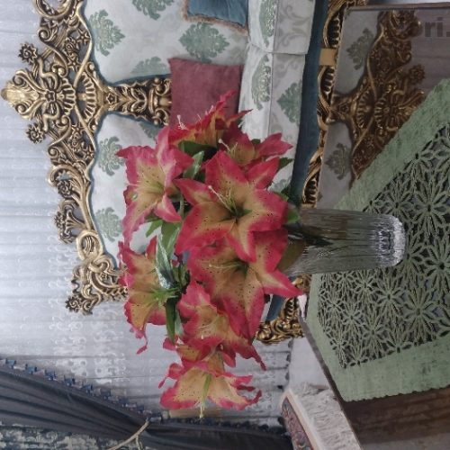 گل با گلدون نو ۲۵۰ هزار تومان گلدون اصل ژاپن