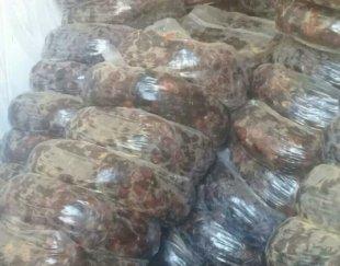 فروش عمده خرمای جنوب
