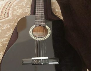 گیتار  هاردکیس