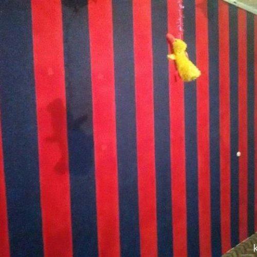 اجرا و فروش بلکا کاغذ دیواری رنگ نقاشی ساختمان