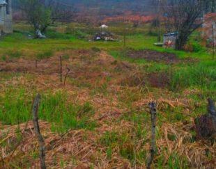 فروش زمین در سقالکسار