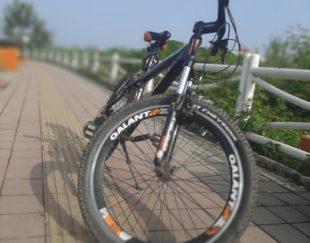 دوچرخه گالانت سایز ۲۶ مدل G800