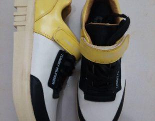 کفش سایز ۴۰