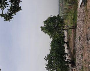 باغ به متراژ ۱۷۵۰متر رشتقون