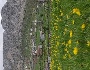 فروش زمین در کوه دمیلرز