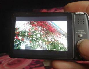 دوربین عکاسی و فیلمبرداری پاناسونیک لومیکس