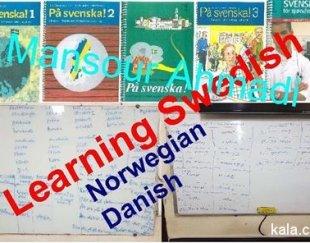 آموزش زبان های سوئدی، دانمارکی و نروژی
