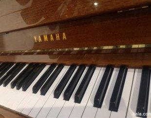 مشاور تلفنی برای خرید انواع ساز ها مخصوصا پیانو