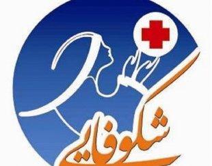 مراقبت از:کودک سالمند٬بیمار شرکت خدماتی مراقبتی