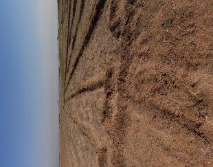 زمین کشاورزی در محمودآباد صفادشت