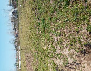 زمین باغی به متراژ ۲۹۰متر مربع