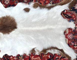 فروش فرش پوست با قیمد های عمده