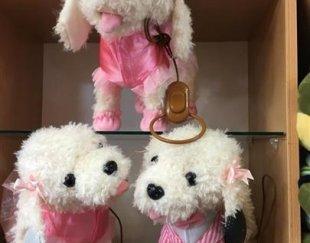 عرضه مستقیم انواع عروسک و اسباب بازی