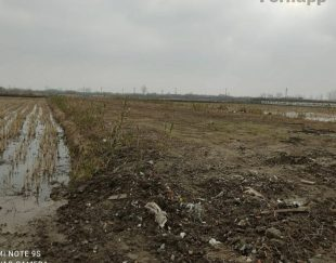 فروش فوری زمین کشاورزی بر جاده