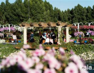 باغبانی و گلکاری،طراحی فضای سبز