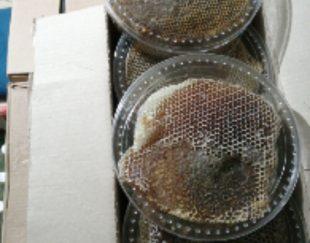 عسل طبی وطبیعی زیر ۱درصد و زیر ۵ درصد