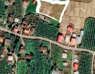 زمین۳۵۰۰متری جوکندان تالش