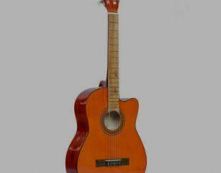 فروش گیتار استوک و نو