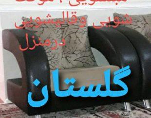 قالیشویی مبلشویی وموکتشویی گلستان