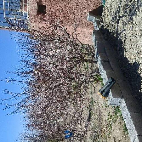 باغ ویلای دوطبقه۳۵۰۰متردراصفهان مبارکه