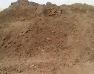 کود کمپوست