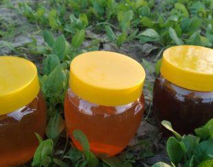 عسل بهاره تابستانه پاییزه