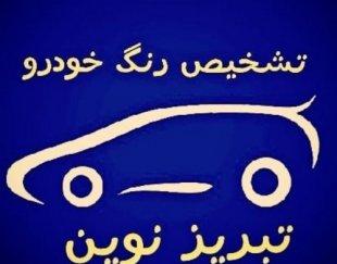 تشخیص رنگ خودرو تبریز نوین