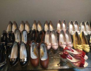 کفش مجلسی و راحتی و اسپورت