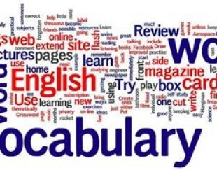 آموزش خصوصی و نیمه گروهی زبان از مقدماتی تا IELTS-TOEFL