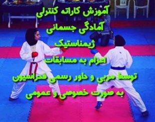 کاراته کنترلی حرفه ای