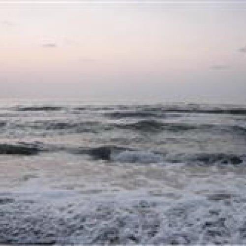 تورترکیبی ۱ روزه ساحل محمود آباد و جنگل چمستان