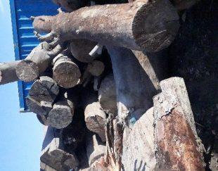خریدار چوب و ضایعات چوبی پالت سالم و شکسته