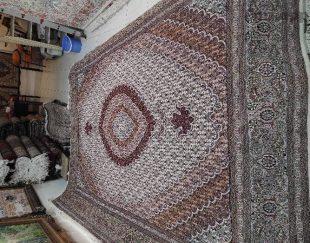 فرش ماهی جفت ۹ متر مرینوس ۴۰ رج رنگ کرم