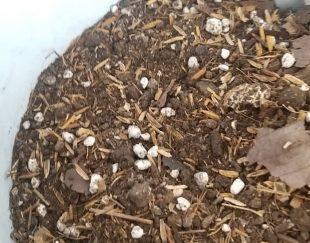 خاک برگ غنی شده