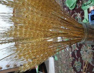 فروش شاخه گندم های زیباخارجی کریستال
