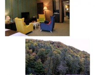 تهاتر هتل نوساز و مجلل جنگلی/ فروش یا معاوضه