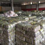 فروش عدس پلویی بسته بندی ۹۰۰گرمی