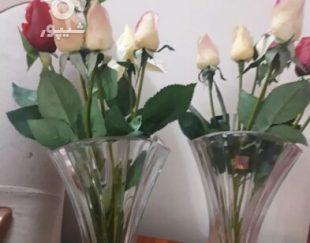 دو عدد گلدان همراه با گل