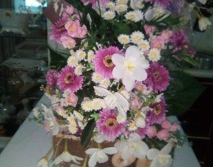 گل مصنوعی دوتا