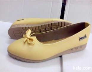 تولیدوپخش انواع کفش های زنانه ومردانه