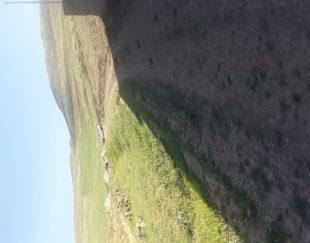 زمینمسکونی۳۲۰۰ متر