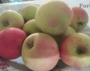 سیب گلاب تازه