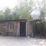 باغچه بادرب وفنس و واحد ۳۰ متری و درختان میوه مثمر