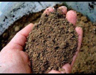 خرید خاک روی