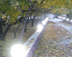 باغ میوه بسیار بزرگ در وحیدیه شهریار